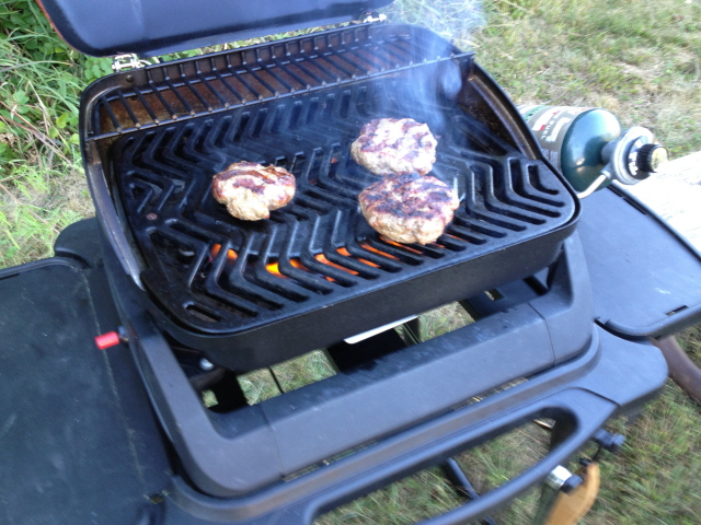 It Fires Up Dependably With The Push Of A Button, And It Heats Up Quickly.  The Heat Is Distributed Evenly Over The Cast Iron Grill Surface, ...
